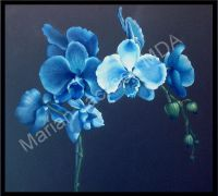 Blue Orchids Colored Pencil  Tutorial