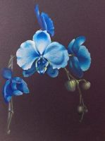 Blue Orchids Abbreviated Video Class